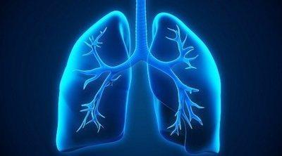 Los bronquios: funciones y afecciones