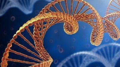 Qué son los cromosomas