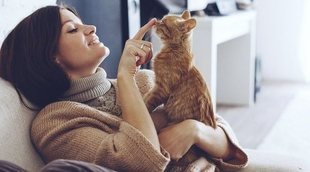 Relación entre la alergia a los gatos, la urticaria y el asma