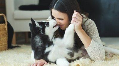 Si tienes asma, ¿puedes tener perro?