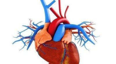 Medicamentos que aumentan la frecuencia cardíaca