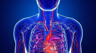 Acrocianosis: en qué consiste esta enfermedad cardiovascular