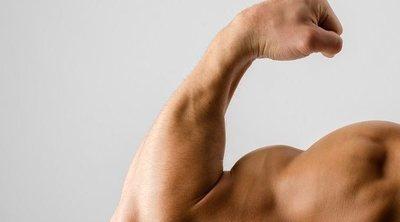¿Cómo afectan las hormonas al crecimiento de los músculos?