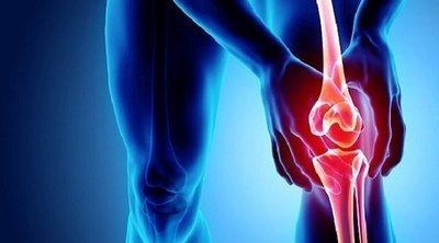 ¿Cómo se absorben los nutrientes en los huesos?